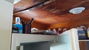 LACK OF CARE - Due to debris on the roof never cleared off for probably 2 years the ice melted backing up under the metal roofing coming into the back kitchen leaking thru the ceiling. Once the roof was cleared off the leak stopped